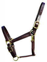 Halter, Leather Classic (Walsh 3700)