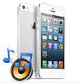 iPhone Repair - iPhone 5 Speaker Replacement