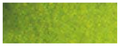 Van Gogh Watercolor Pan Olive Green