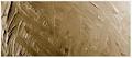 Grumbacher Academy Oil Raw Sienna