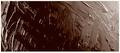Grumbacher Pre-tested® Burnt Sienna Deep 37ml
