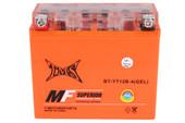 GEL YT12B-BS Battery for Yamaha YZF-R1 YZF-R6 XVS650 V-Star
