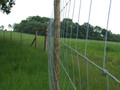 HT13/190/8 50m Deer Fencing