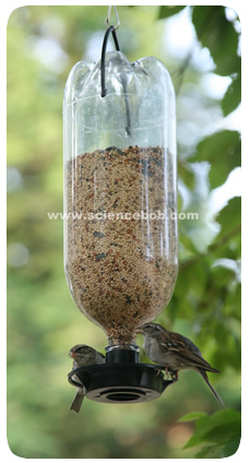 bottle_bird_feeder_2.jpg