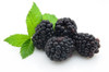 E-Liquid Blackberry