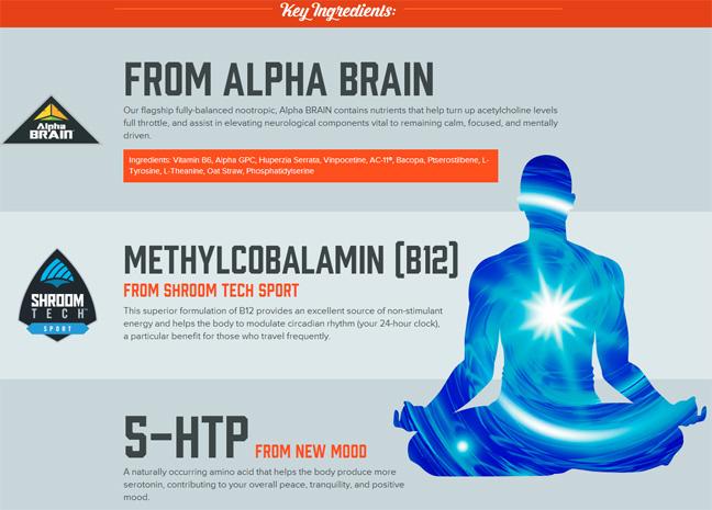 alpha-brain1.jpg