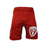 Torque Impact MMA Fight Shorts
