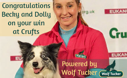http://www.wolftucker.co.uk/news/wolf-tucker-fuels-one-of-the-fastest-dogs-at-crufts/