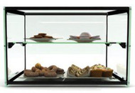 Sayl - ADS0010 - Ambient Display – Two Tier 550mm. Weekly Rental $6.00
