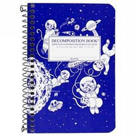 DECOMPOSITION pocket notebook SPIRAL