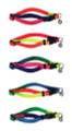 Cat Collar in Rainbow Colours