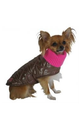Pet London Quilted Coats Brown