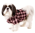 Urban Pup Red / Black Tartan Teddy Bear Duffle Coat