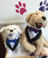 Wedding Slide On Dog Bandana with Bowtie