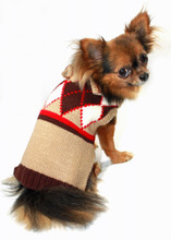 Hip Doggie Brown Argyle Sweater