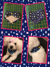BFW Handmade Snap On Dog Bandana