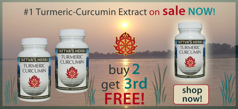 Turmeric Curcumin supplement - On Sale!