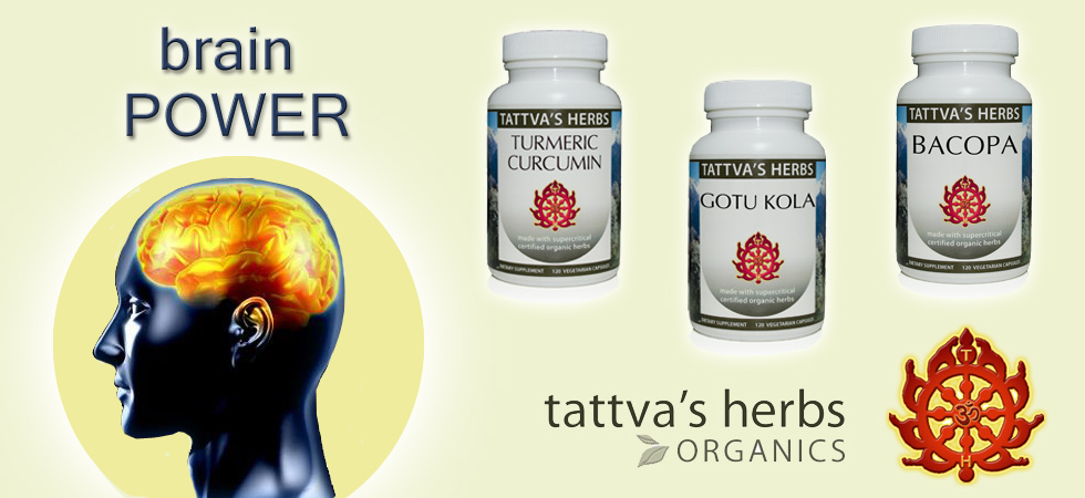 Herbs for Brain and Mental Health from Tattva's Herbs