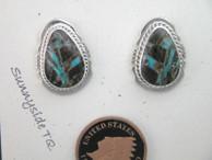 Sunnyside Turquoise Post Earrings