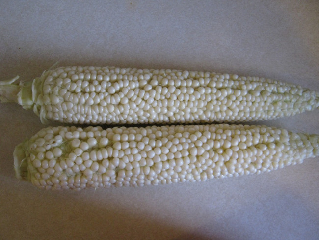 Country Gentleman Sweet Corn - Organic