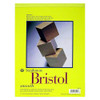"Strathmore 300 Bristol, 11 x 14"" Smooth"