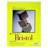 "Strathmore 300 Bristol, 14 x 17"" Smooth"