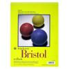 "Strathmore 300 Bristol, 14 x 17"" Vellum"