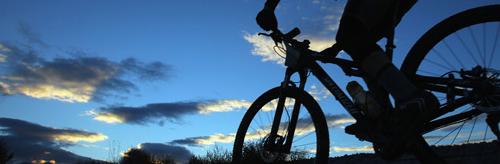 bike-bearings.png