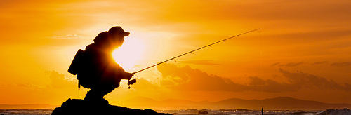 fishing-reel-bearings.png