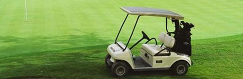 golf-cart-bearings.png