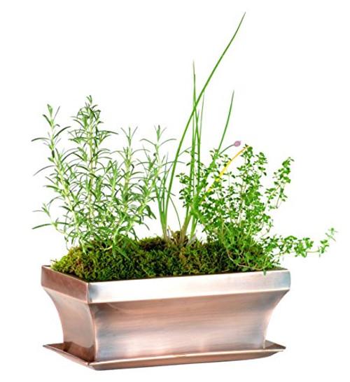 H Potter Garden Flower Window Box Planter