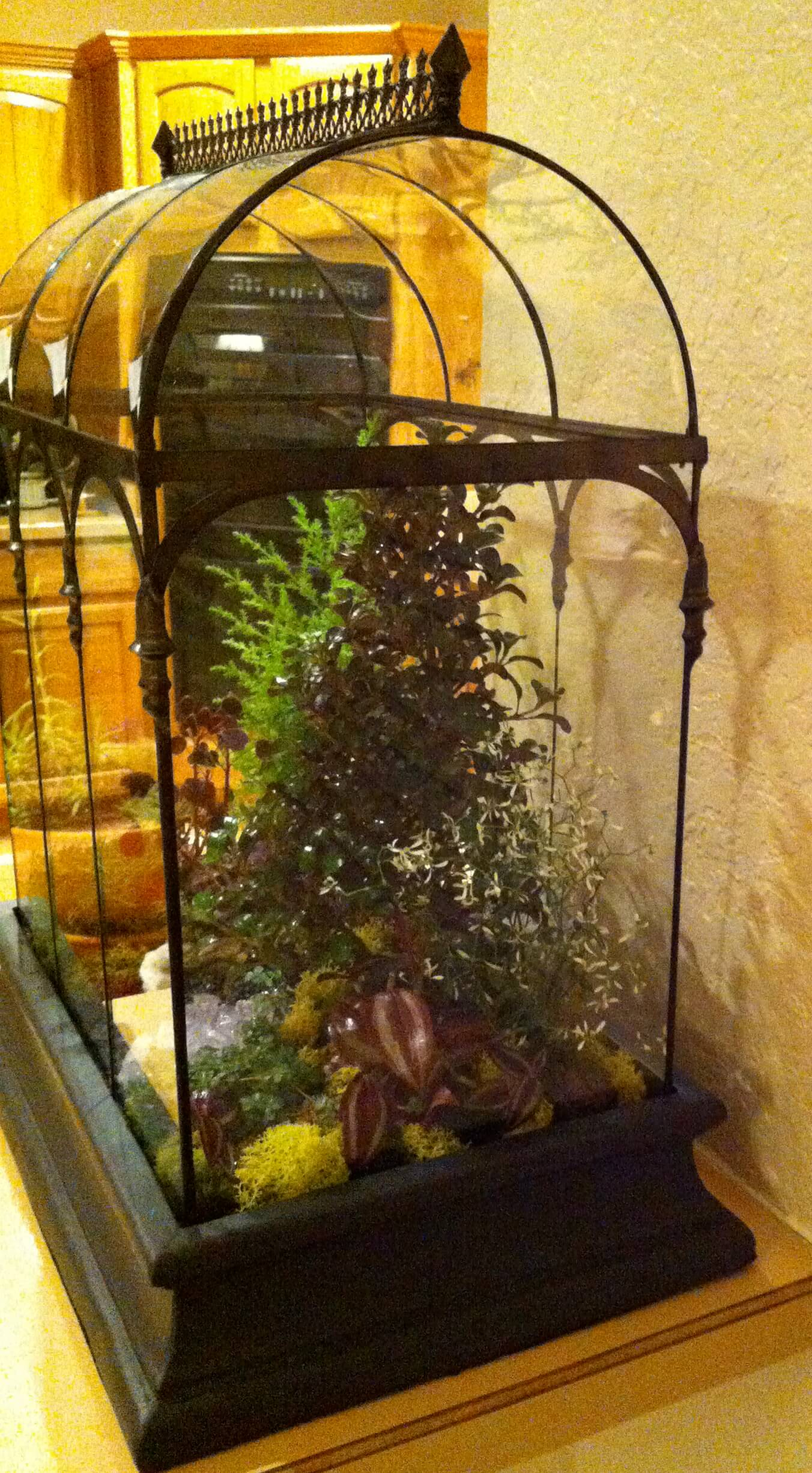 Picture of H Potter Barrel Vault Terrarium from a happy customer.