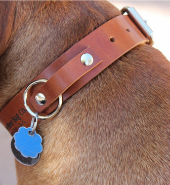 Dog Collar - Toffee Full Grain Leather Made in the U.S.A.