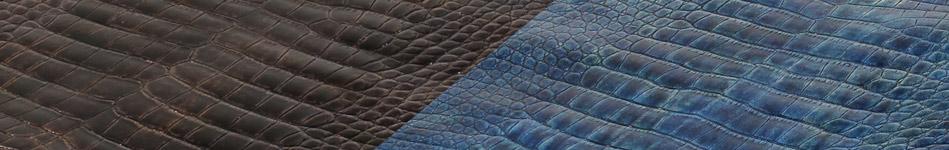 Alligator Skins - Poly Millennium Finish