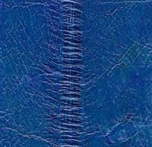 Genuine Eel Skin Panel - Turquoise