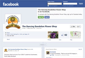 Visit The Dancing Dandelion Facebook Page