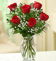 6 Stems Red Love's Embrace Roses