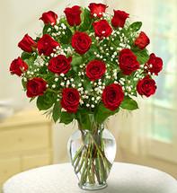 18 Stem Red Rose Elegance Premium Long Stem