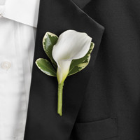 Blue Ring Bearer Boutonniere