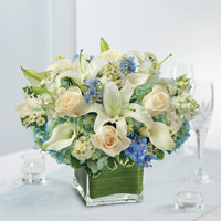 Blue Centerpiece Package
