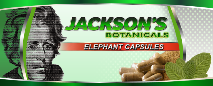 elephant-capsule-banner.png