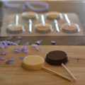 "Flat Round (2"") Lollipop Chocolate Mould"