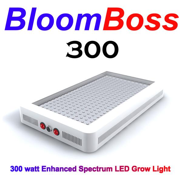 bloomboss300logo600.jpg