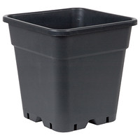 Square Black Plastic Pot 12""