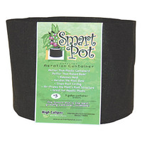 "Smart Pot #3 - 10"" - 3 Gallon"