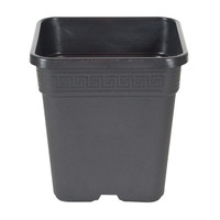 Square Pot - Black - 7 inch