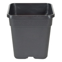 Square Black Plastic Pot 14""