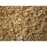 Build A Soil Rice Hulls
