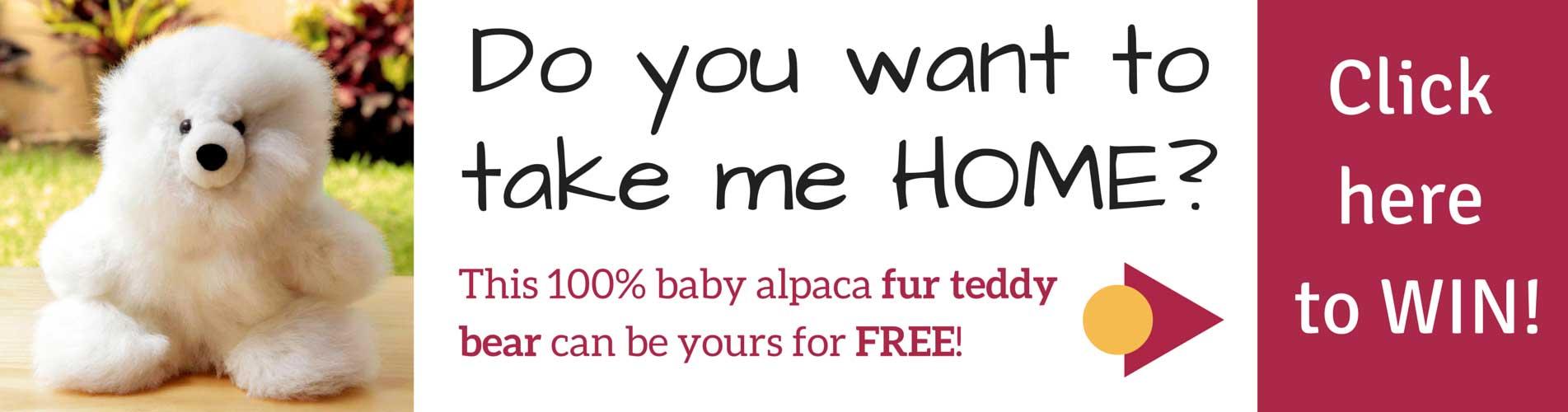 alpaca-bear.jpg