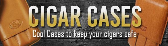 cases-banner-2015-585x160.jpg